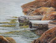 Sea Weaving - Kelp